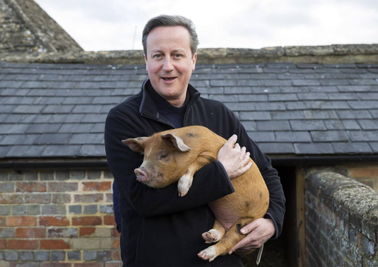 Dodgy Dave visibly excited on a promising date